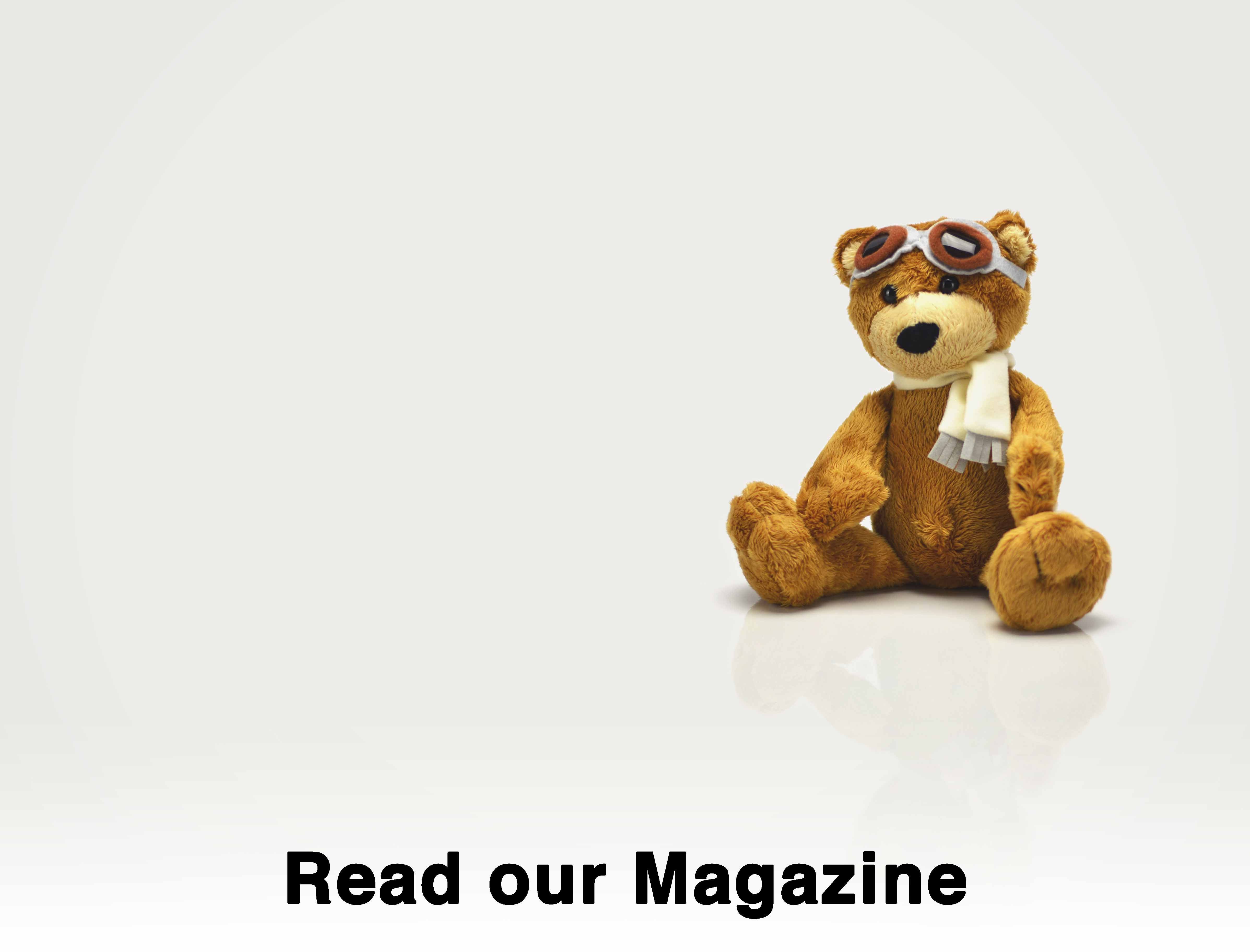 PPL/IR - Europe read our magazine